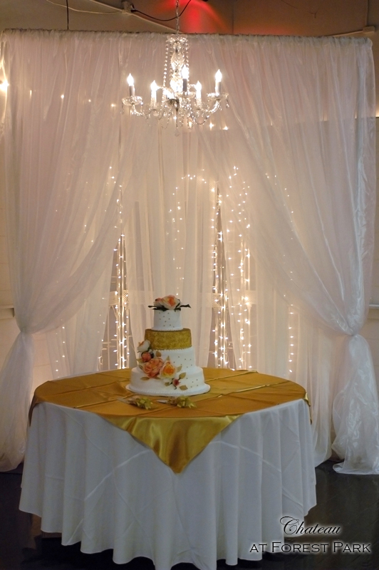 Curved Canopy, Layered Sheer Curtain & Twinkle Light Background