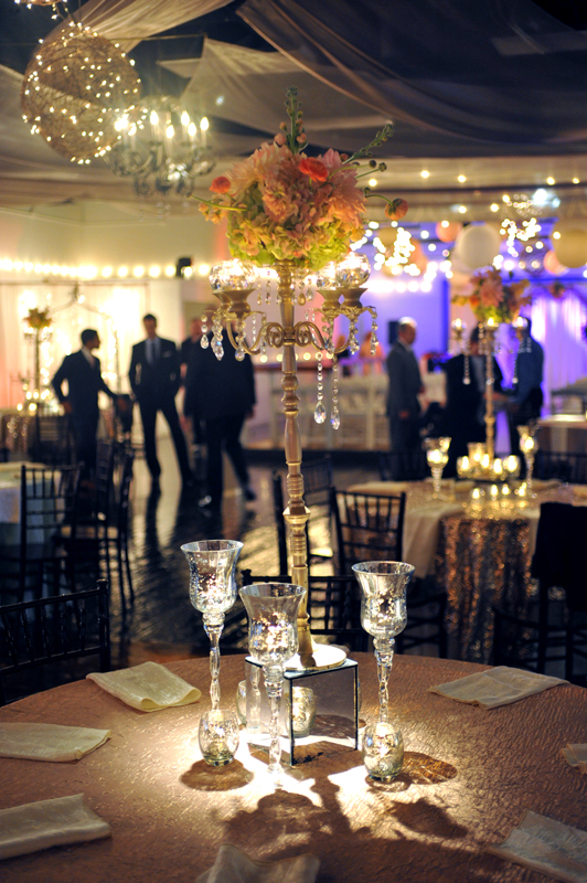 Wedding Reception - Wedding Day - 1023