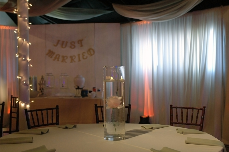 Wedding Reception - Wedding Day - 1033