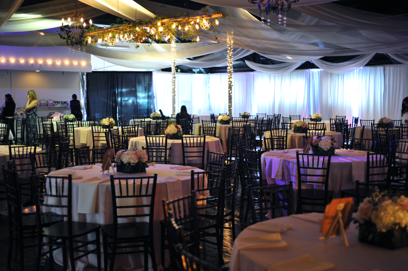 Wedding Reception - Wedding Day - 1060
