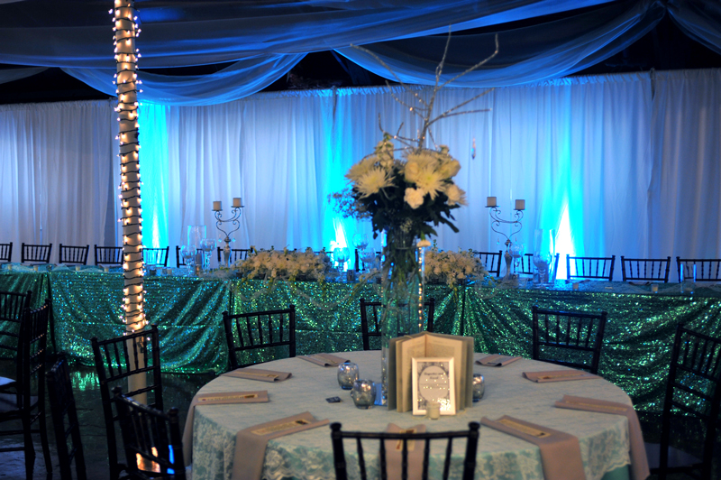 Wedding Reception - Wedding Day - 1064