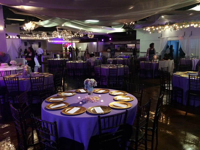 Wedding Reception - Wedding Day - 1069
