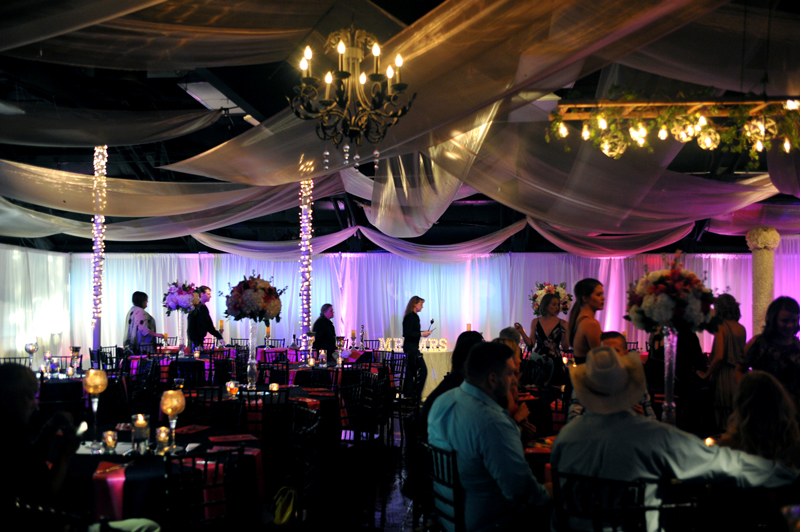 Wedding Reception - Wedding Day - 1071